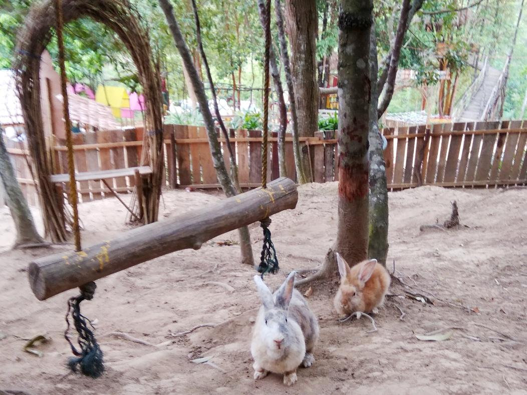 Taman Kelinci Sekupang