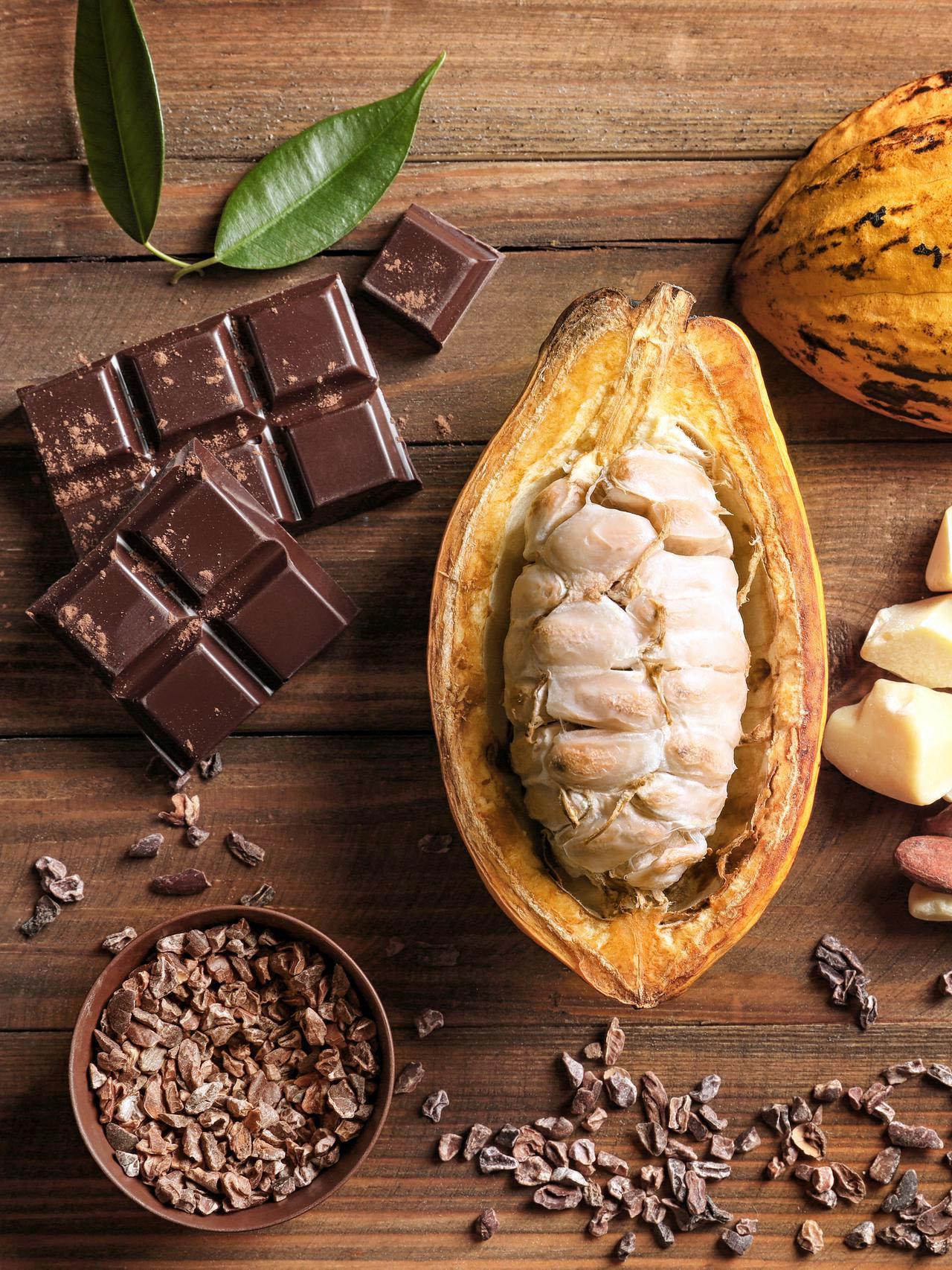 Perbedaan Kokoa dan Kakao